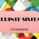 Cerinte sistem PC LiveJasmin