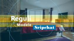 Reguli Modele Strichat