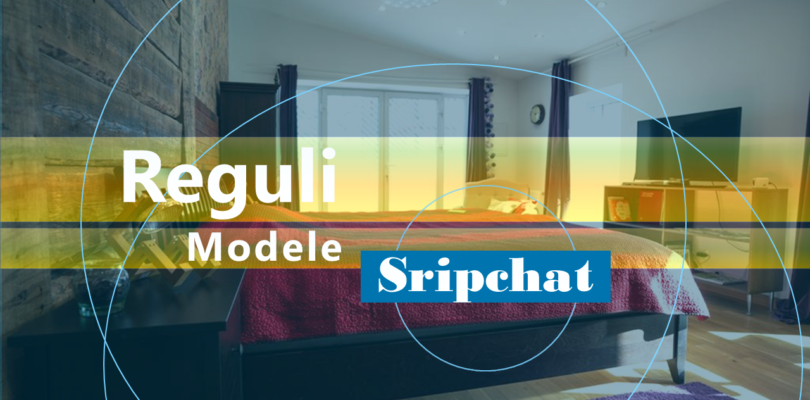 Reguli Modele Strichat