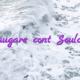 Adaugare cont Soulcams