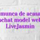 Loc de munca de acasa online videochat model webcam LiveJasmin
