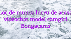 Loc de munca lucru de acasa videochat model camgirl Bongacams