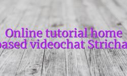Online tutorial home based videochat Strichat