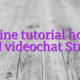 Online tutorial home based videochat Strichat