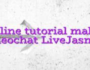 Online tutorial maker videochat LiveJasmin