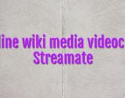 Online wiki media videochat Streamate