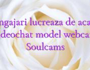 Angajari lucreaza de acasa videochat model webcam Soulcams