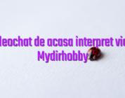 Cont videochat de acasa interpret videochat Mydirhobby