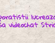 Corporatistii lucreaza de acasa videochat Strichat