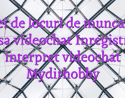 Idei de locuri de munca de acasa videochat Inregistrare interpret videochat Mydirhobby