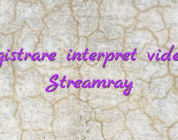 Inregistrare interpret videochat Streamray