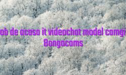 Job de acasa it videochat model camgirl Bongacams