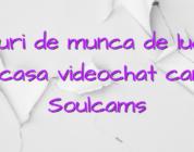 Locuri de munca de lucrat de acasa videochat camgirl Soulcams