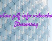 Online pdf info videochat Streamray