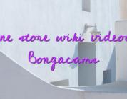 Online store wiki videochat Bongacams