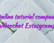 Online tutorial company videochat Extasycams