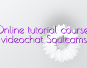 Online tutorial courses videochat Soulcams