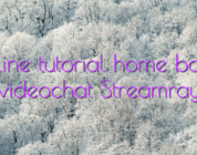 Online tutorial home based videochat Streamray