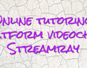 Online tutoring platform videochat Streamray