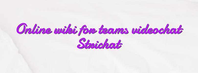 Online wiki for teams videochat Strichat