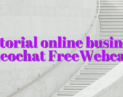 Tutorial online business videochat FreeWebcams