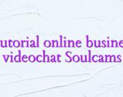 Tutorial online business videochat Soulcams