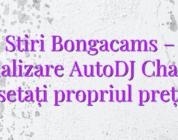Stiri Bongacams – Actualizare AutoDJ Chatbot: setați propriul preț!