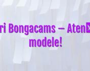 Stiri Bongacams – Atenție, modele!