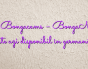 Stiri Bongacams – BongaModels este azi disponibil în germană!
