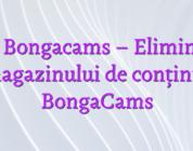Stiri Bongacams – Eliminarea magazinului de conținut BongaCams