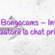 Stiri Bongacams – Invitați utilizatorii la chat privat!