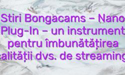Stiri Bongacams – Nano Plug-In – un instrument pentru îmbunătățirea calității dvs. de streaming!