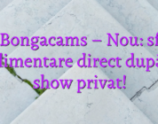 Stiri Bongacams – Nou: sfaturi suplimentare direct după un show privat!