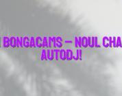 Stiri Bongacams – Noul chatbot AutoDJ!