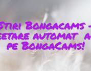 Stiri Bongacams – Tweetare automată acum pe BongaCams!